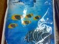 теплое одеяло с рыбками