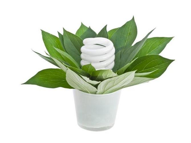 Вредны ли энергосберегающие лампы