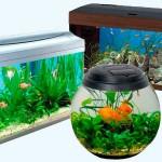 Какой аквариум лучше готовый или заказной?