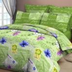 Постельное белье «Васильковый прованс зеленый «
