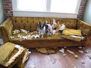 12 лайфхаков для восстановления испорченной мебели
